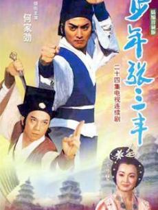 少年张三丰(1991台湾何家劲版)