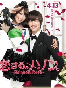 恋爱满屋之彩虹玫瑰